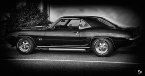 Black beauty by ShannonCPhotography