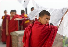 The young Buddhist monk by TyKKa