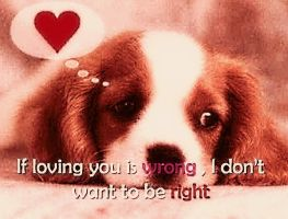 Love-quotes-cute-puppy by YOKOKY