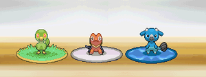 What SEHADO STARTERs do you choose ? by WesleyFG