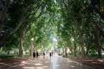 Hyde Park by ntpdang