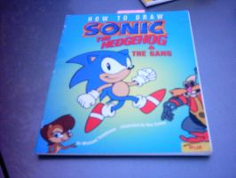 Sonic the hedgehog book by Names-Tailz