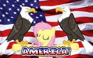 America! by Lord4536