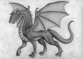 Dragon by valastaja