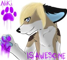 Nikiawesome Original Picture by Skailak