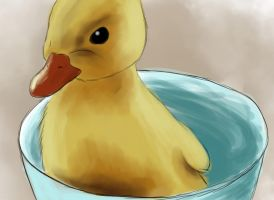 Duckling by Kilala1994