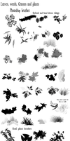 Leaves and grass brushes by Amelius