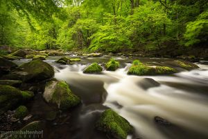 Stream by MatthiasHaltenhof