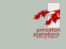Princeton-Plainsboro Wallpaper by Pencilshade