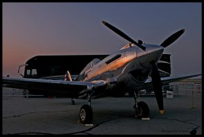 P-40 Sunrise II by AirshowDave