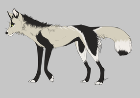 Canine Adopt 1 - TAKEN by Redbell9