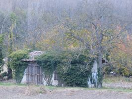 Small caban in autumn by A1Z2E3R