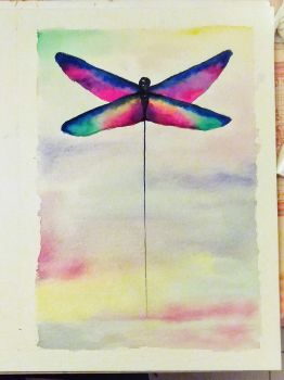 The Dragonfly serie - #2 - Air by shoesontheroad
