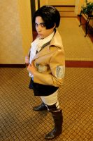 SnK: Levi by sunlitebreeze