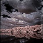 Infrared Tintype View by vw1956