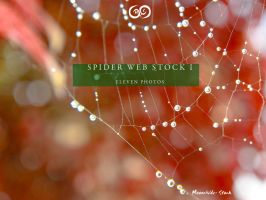 Spider Web Pack I Stock by Moonchilde-Stock