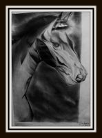 horse in graphite. by Oscarliima