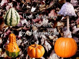 2010 Free Autumn Tubes by Jenna-Rose