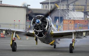 P-47 WarmUp by shelbs2