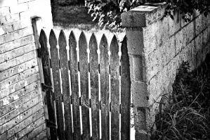 Fence by GambllingYouth