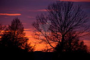 Late fall sunset 2 by rileyroo