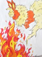 Flareon :D by Kyhber