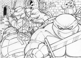 TMNT lines by scarecrowhassan