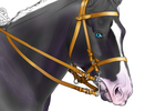 Dressage Horse - UF by horse-art-here