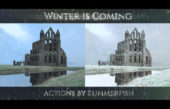 Winter is Coming by zummerfish