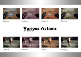 Various Actions by cosboom