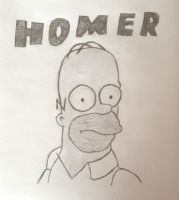 Homer Simpson by Healerus