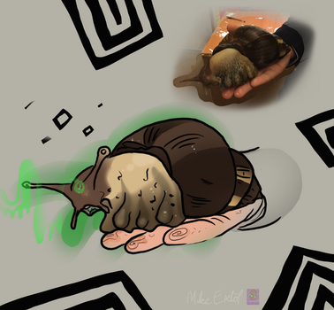 Snail Commission2 by MrCanisSkulltail