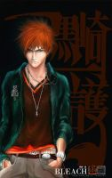 bleach 217 by waterist