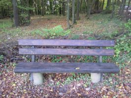 Bench in the Forrest 02 by Fea-Fanuilos-Stock