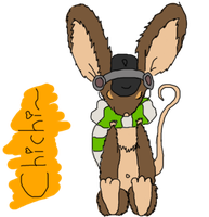 An introduction of chichi by chichinana