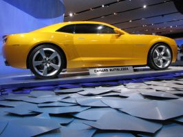 Chevrolet Camaro Bumblebee -2 by Big-D-pictures