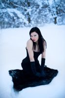 Wintertime stock 1 by Catarina-stock