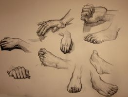 Hands And Feet Study by Abalone-Da-SeaSnail