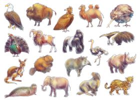 Endangered Species of the Wold Game (Animals) by Fany001
