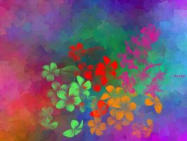 Flowers n colors by hamzaz