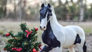 Gypsy Christmas by BamaBelle2012
