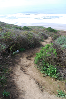 Path to the Beach by CompassLogicStock