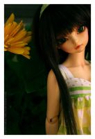 Blume by animal-nitrate