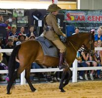 STOCK - 2014 Total Equine Expo-30 by fillyrox