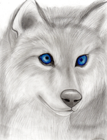 Wolf with blue eyes by Takas15
