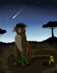 THK- A New Beginning (Healer Tyro Tryout)(Picture) by MetalWolfGemstone