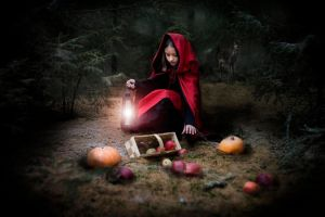Little Red Riding Hood by kamillaernandes