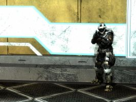 Halo Reach: standing by by purpledragon104