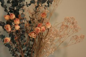 Dried Flowers I by Pandora-Effekt