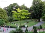 Grass areas of Jardins du Trocadero by EUtouring